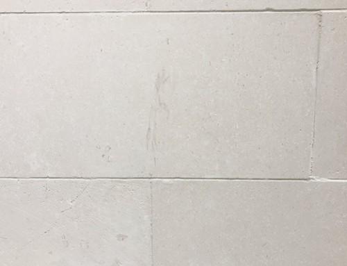 Ivory/White TK